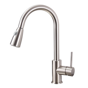 Professional Copper Pullout Two Type Water Kitchen Faucet