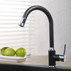 High End Black Painting Rotatable Kitchen LED Faucets