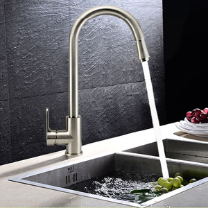Professional Brass Brushed Nickel Kitchen Faucet Pullout Spray