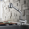 Best Quality Single Hole Rotatable Pullout Spray Kitchen Faucet