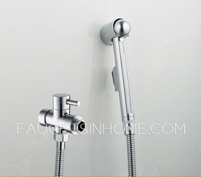Modern Electroplated Wall Mounted Bathroom Bidet Faucets